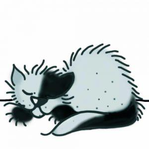 Katze friert - wir brauchen Fensterdichtungen